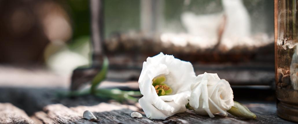 Weiße Rosen auf Holztisch bei Hochzeit